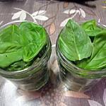 recette Basilic frais congelé.