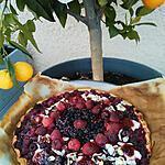 recette Tarte facile et rapide aux ... framboises  fraises myrtilles surgelés  ...aux moelleuses madeleines saveur citron