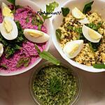 recette Deux  salades de crudités et un pesto