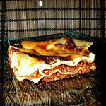 recette Lasagnes simplissimes