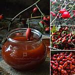 recette Confiture sauvage de gratte-cul (cynorrhodons)