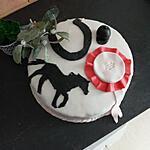 recette Gâteau cheval équitation
