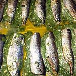 recette Filets de sardines farcis aux blettes et fromage