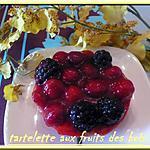 recette TARTELETTES AUX FRUITS DES BOIS