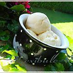 recette Crème glacée à la guimauve grillée