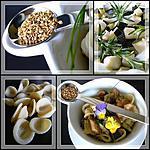 recette SALADE TIEDE D'ORECCHIETTE, COURGETTES, POULET ET SESAME