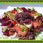 recette salade au gésier de volaille