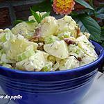 recette ~salade de pommes de terre à l'ancienne~