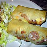 Rouleaux kebab & boursin