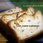 CAKE JAMBON CAMEMBERT
