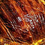 recette Galette des rois (sans beurre) Frangipane aux Noix et Poires