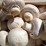 recette champignons rillettes