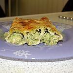 recette Cannelloni Farci Au Poisson ( Environ 15 Tubes )
