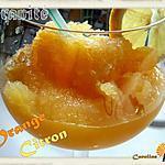 recette Granité à l'orange