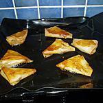 recette feuilles de bricks à la terrine de canard