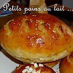 recette Ooo Petits pains au lait salés ou sucrés ooO
