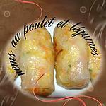 recette nems au poulet et légume