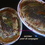 recette terrines, paté de campagne