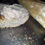 recette Mousse de sardines