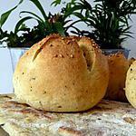 recette Ooo Petits pains à la semoule et à l'huile d'olive ooO