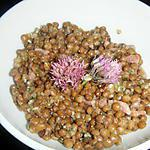 recette SALADE DE LENTILLES