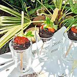 recette Sucettes de fraises enrober de chocolat