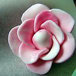 recette Fleur d'églantine