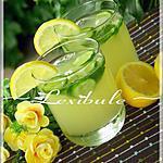 recette Limonade rafraîchissante