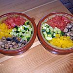 recette Quatuor de légumes sur pate à cocas