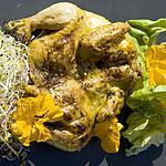 recette Poussin grillé à la grecque.