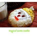 recette Gâteau Père Noël Tropical