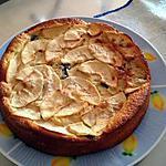 recette Moelleux aux pommes et aux pépites de chocolat (light)