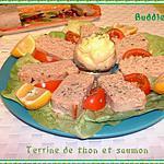 recette Terrine de thon et saumon
