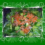 recette Ma salade au daïkon
