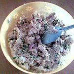 recette Rillettes de thon!!