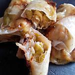 Nems aux poireaux et parmesan