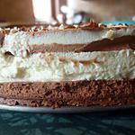 recette Gâteau aux trois chocolats et son craquant de praliné.
