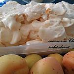 recette sorbet aux abricots
