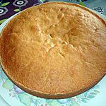 recette gâteau aux abricots super moelleux d 'Eglantine (des foodies)