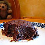 recette Gateau au chocolat, abricot, noix, sans cuisson, sans beurre, sans farine, sans oeufs !
