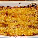 recette Lasagne sauce tomate et coriandre de Kat