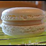 recette Macaron Vanille Chocolat Blanc