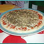 recette Pizza tomate,champignons, origan, fromage
