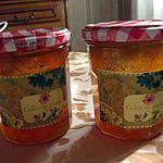 recette Gelée de raisins (sans peaux ni pépins)