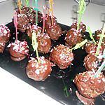 Premier cake pops fait par ma fille