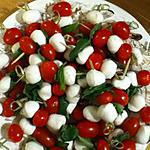 recette Brochettes de tomates et de mozzaaaaa !
