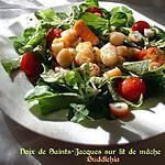 recette Noix de Saint-Jacques sur lit de mâche