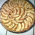recette Tarte aux pommes aux epices sans MG & sans sucre ajouté