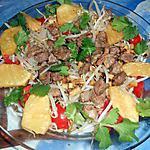 Salade de canard,soja,ananas,gingembre et poivre de sechuan