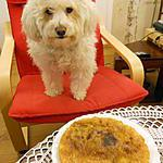 recette TARTE A CHUC  (la vraie tarte au sucre du Nord)